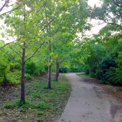 Homes for sale downtown Houston bike trail